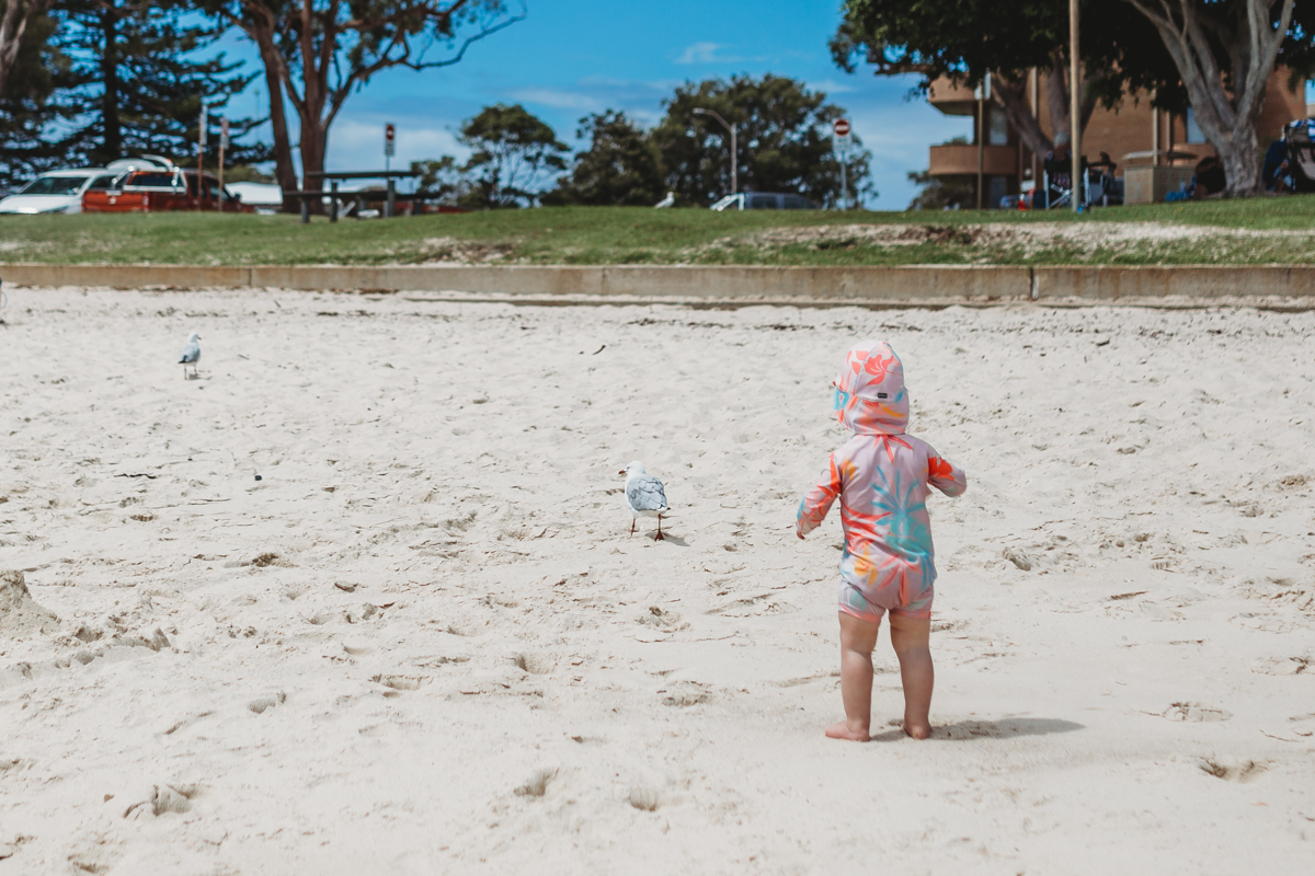 Toddler standing on the sand at the beach, facing seagull