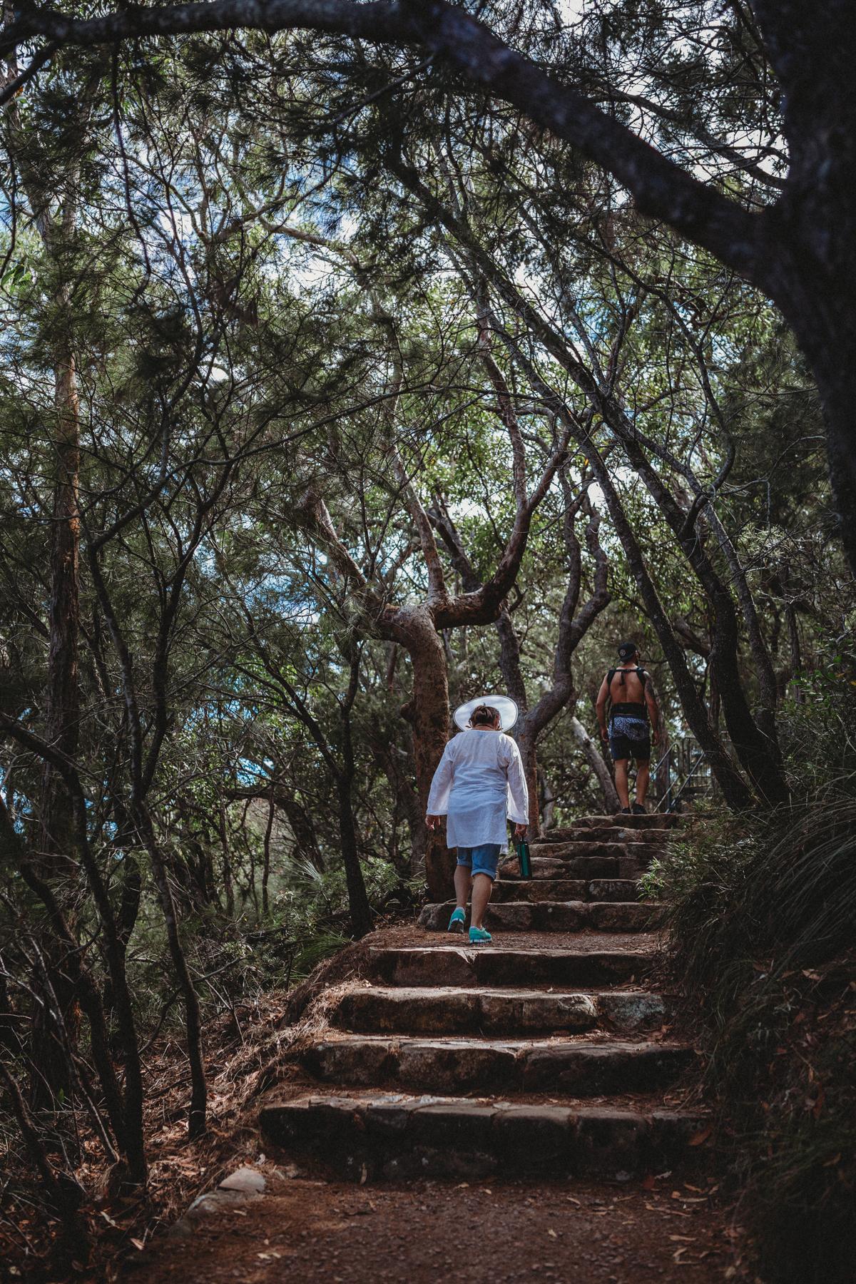 Mt Tomaree walk