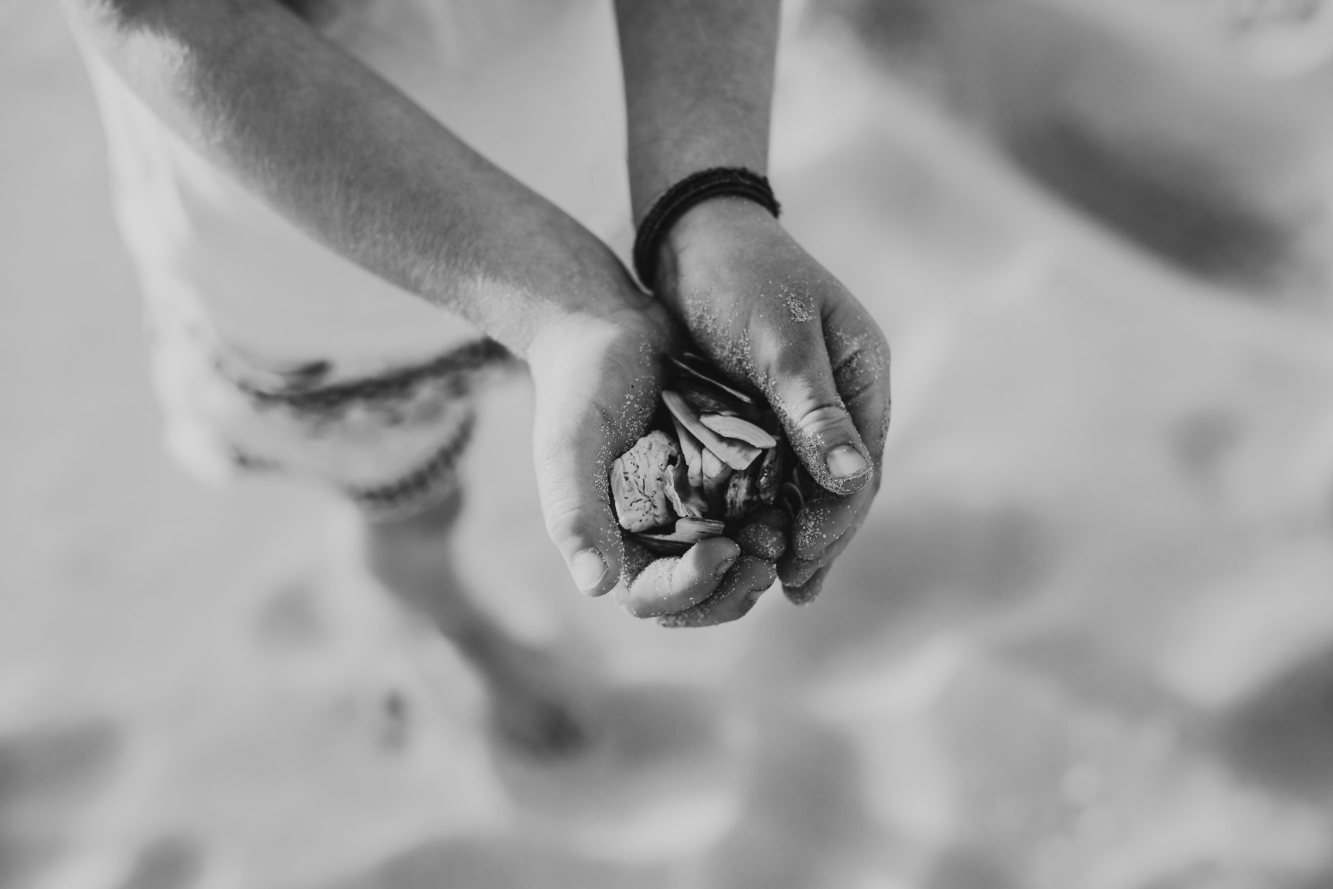 Black and white image of hands cupped together holding shells