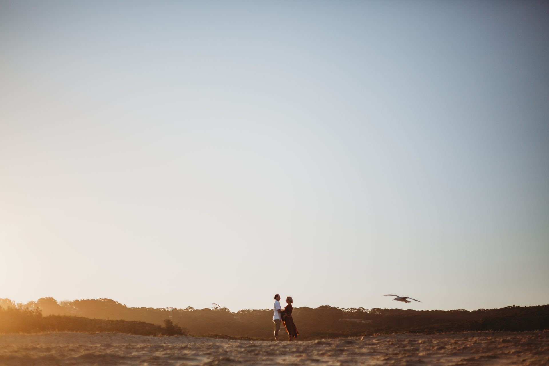 Far away shot of young couple standing facing each other on the beach, as a seagull flies nearby