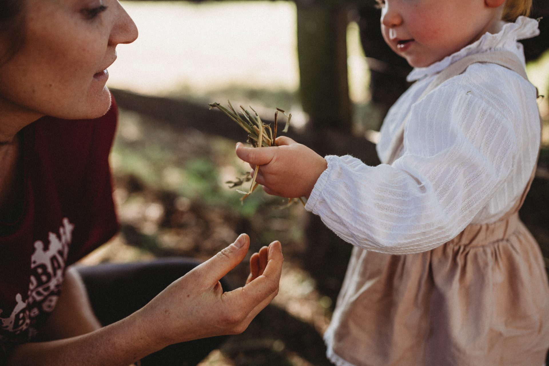 Close up of toddler holding handful of grass